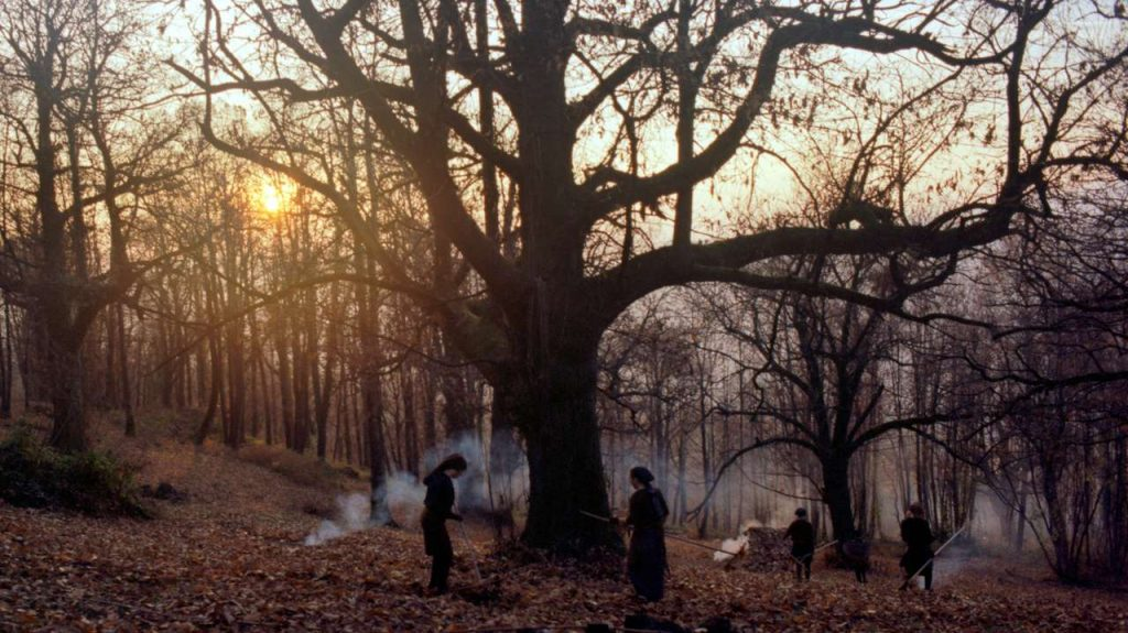 Pogovor o(b) filmu Zgodbe iz kostanjevih gozdov