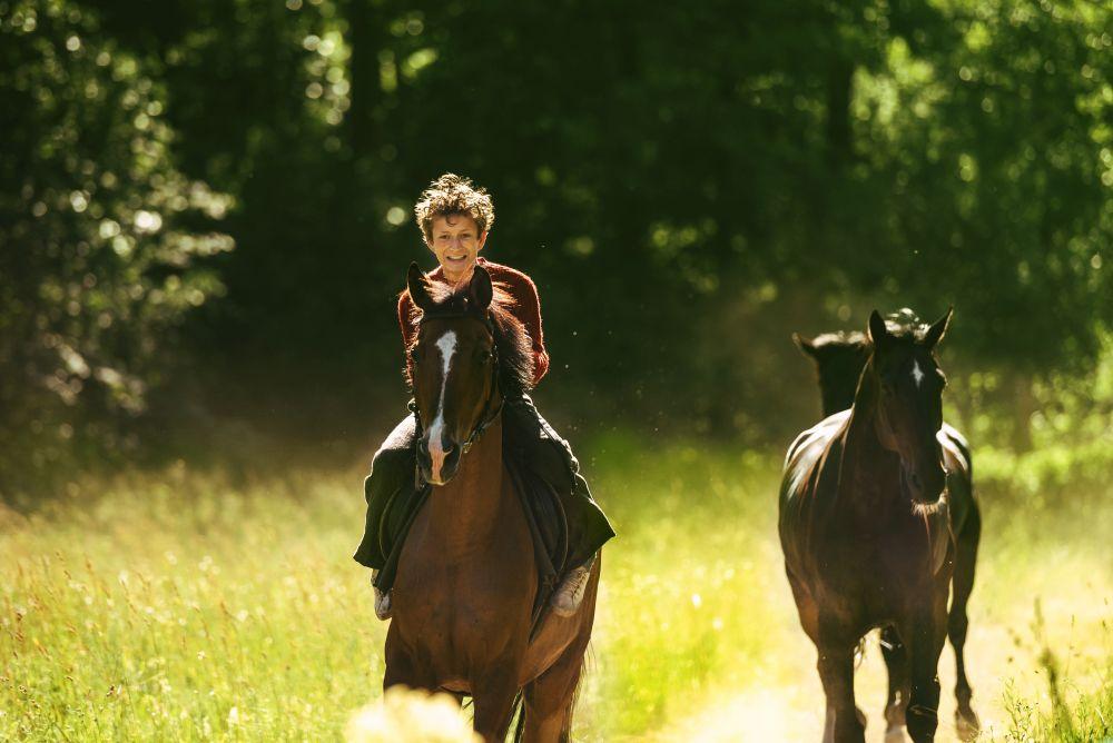 Konje krast