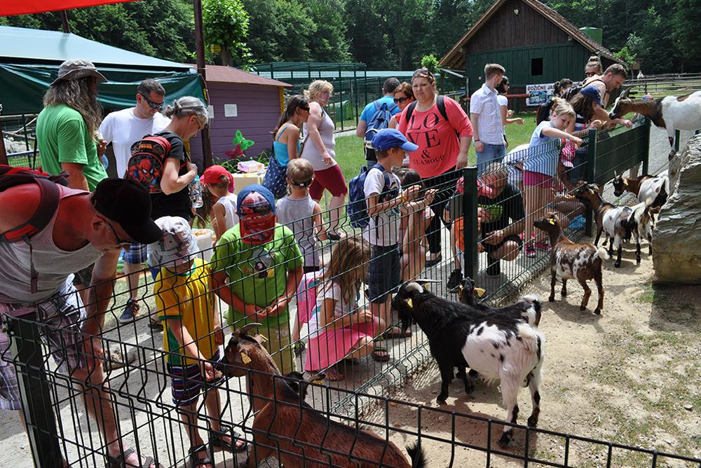 Družinski izlet v živalski vrt
