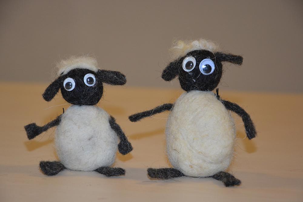 Čreda volnenih ovčk
