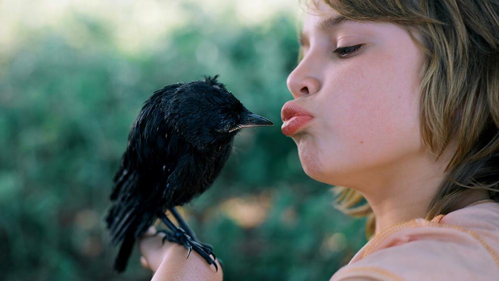 Kino počitnice: Otroci in živali